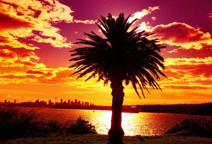 Silhouette of Sydney, Australia